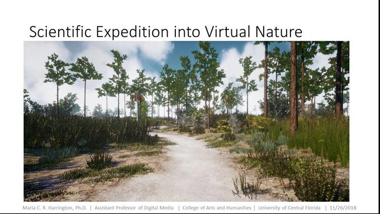virtual nature
